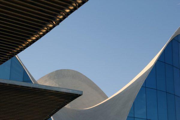 Détail architecture cité des sciences Valencia